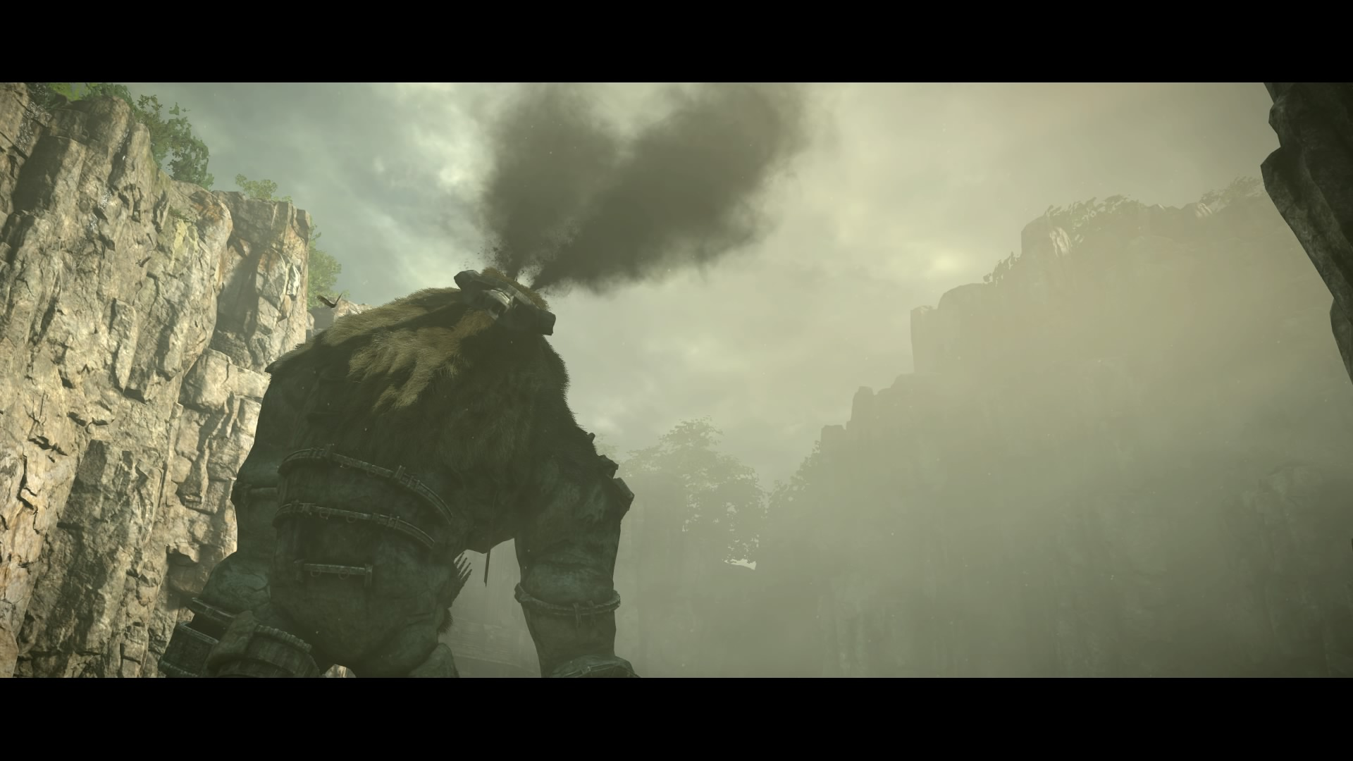 SHADOW OF THE COLOSSUS™_20180211194430